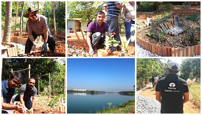 Tata Coffee employees volunteered to create Bangalore's first ever community garden