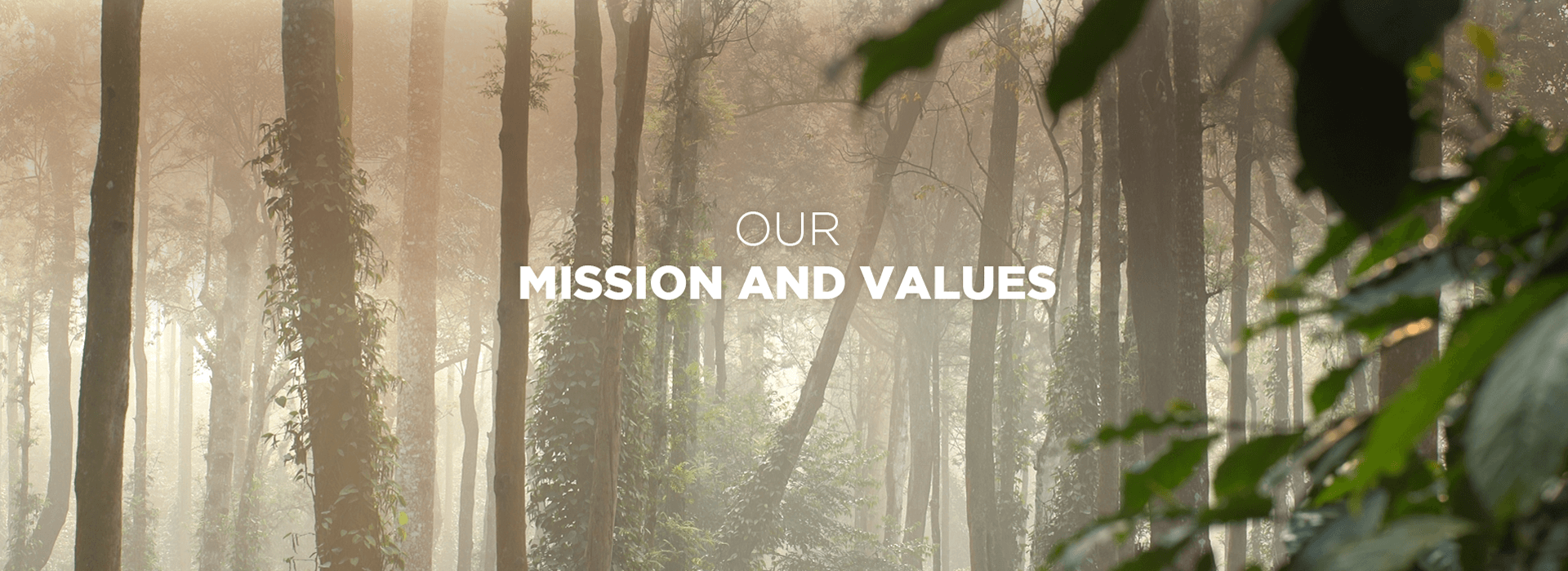 Our Mission and values  - Desktop - Tata Coffee