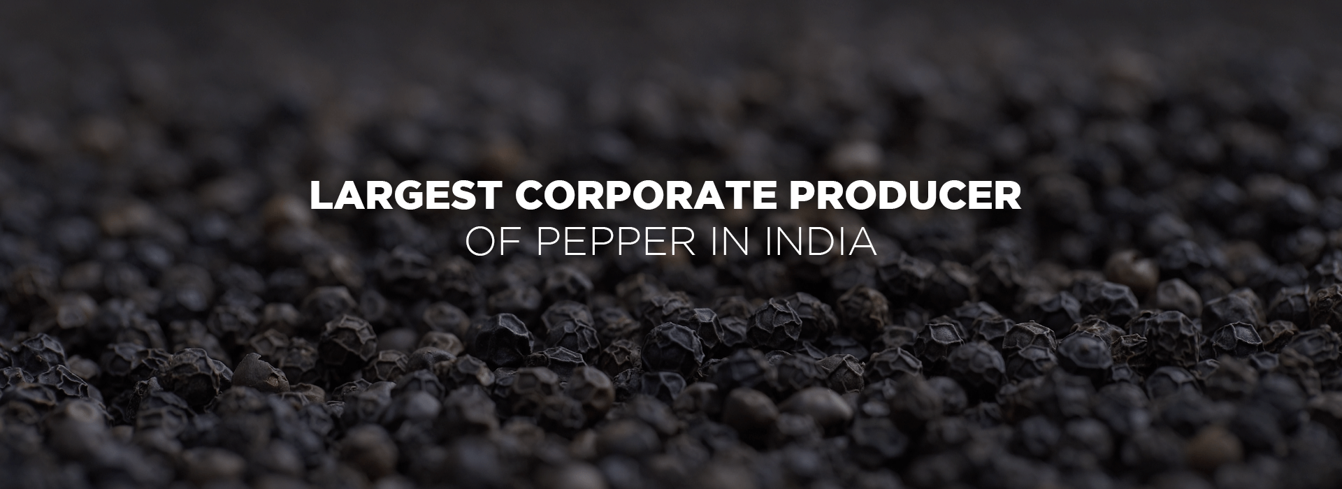 Largest corporate producer of pepper in india