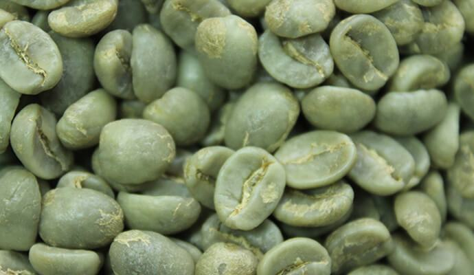 Washed Arabica Coffee Beans - Tata Coffee