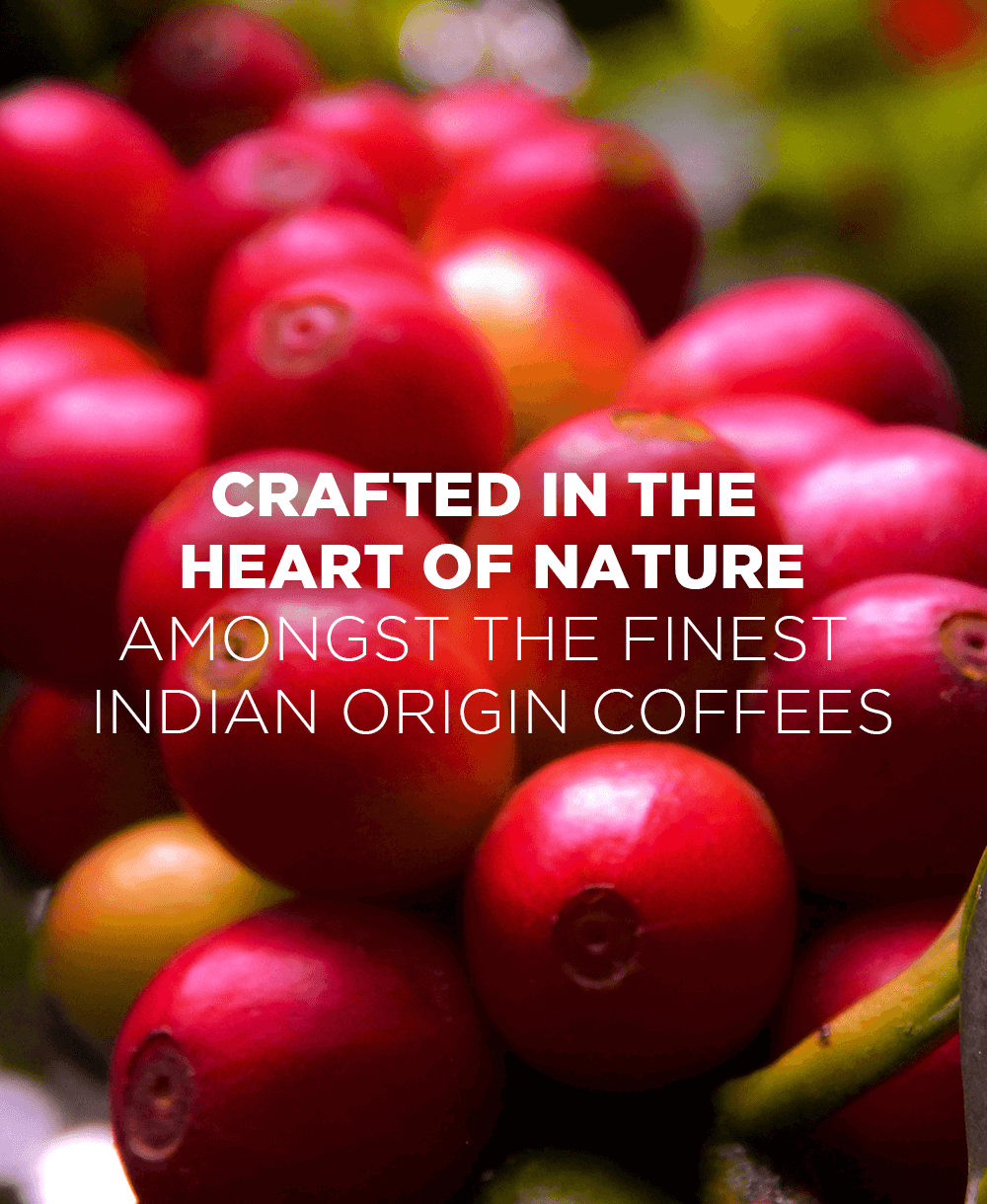Green Beans Crafted in the heart of nature  - Mobile - Tata Coffee