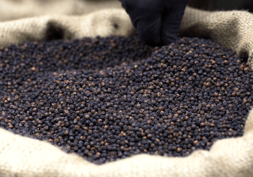 Pepper Traceability - Tata Coffee